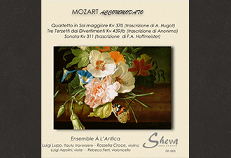 Mozart Accommodato